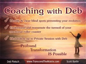 Sessions & Coaching