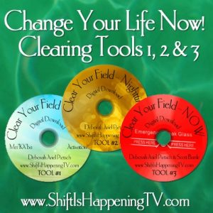 Clearing Your Field tools 1-2-3 - Shift is Happening