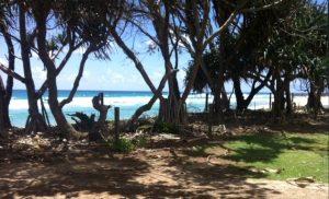 Kingscliff Beach NSW Australia