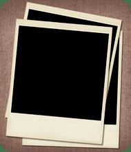 Polaroid photos blank